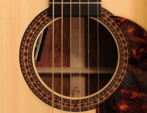 Haley Dreis Custom Acoustic Guitar, Lichty Guitars