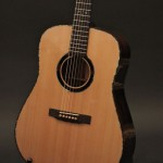 Brazilian Rosewood Dreadnought Guitar – Special Pricing