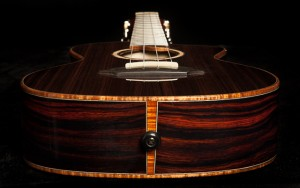 Custom Ukulele, Cocobolo Low G Tenor