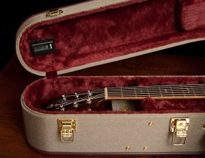 Lichty Custom Guitar in an Ameritage Casee