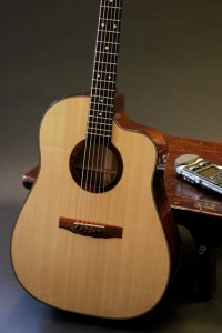 Spanish Cedar Cutaway Lichty Guitar with LR Baggs Pick