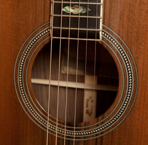 Custom Pau Ferro Dreadnought Guitar