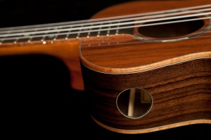 Indian Rosewood Tenor Ukulele