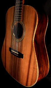 Custom Guitar, Cocobolo and Sinker Redwood Dreadnought