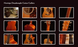 Hormigo Guitar Gallery