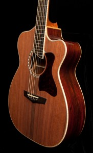 Custom Guitar, Cocobolo Alchemist-15