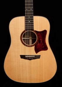 Indian Rosewood Dreadnought Guitar