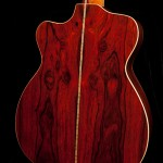 Custom Acoustic Guitar review, cocobolo alchemist