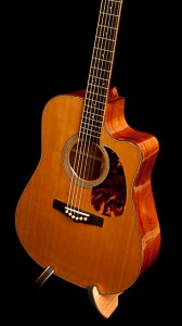 Hormigo Dreadnought Guitar
