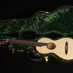 Ancient Kauri Guitar in custom Cedar Creek Case