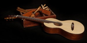 Ancient Kauri Dream Guitar
