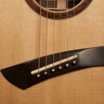 Wenge Small Jumbo Custom Guitar, G75