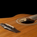 Lichty Custom Acoustic Guitar, Wenge and Sinker Redwood G79
