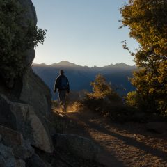 sequoia-sunrise-4