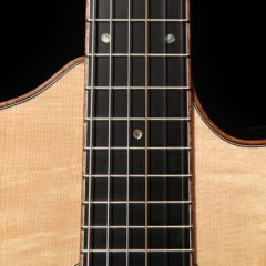 Custom-Guitar-Single-Ought-G99