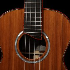 u113-custom-five string-ukulele