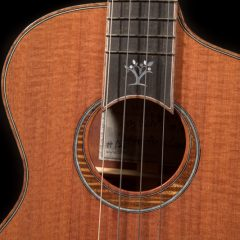 Corey Fujimoto Demo's Lichty Luthier for a Cause Ukulele