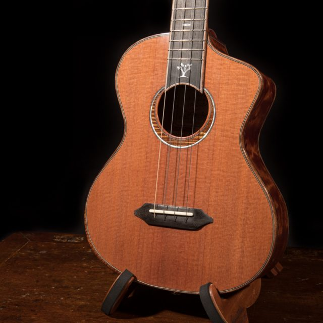 Lichty-Ukulele-Luthiers-for-a-cause