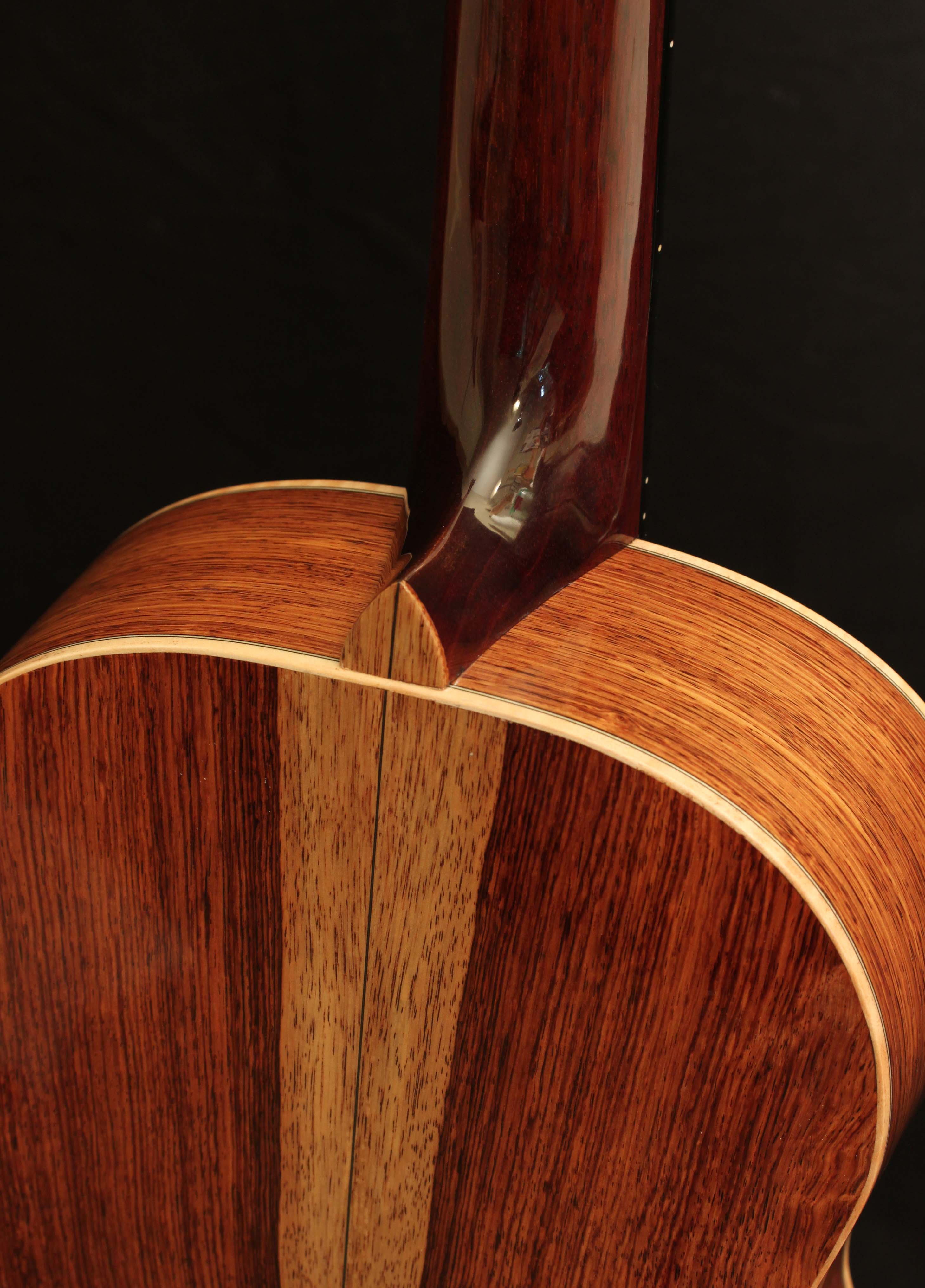 Custom Honduran Rosewood Parlor Guitar