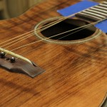 Custom INdian Rosewood Guitar with Curly Redwood top