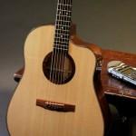 Spanish Cedar Acoustic Guitar – You've got to hear this!