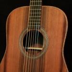 Tom Gossin's Custom Handmade Acoustic Lichty Guitar