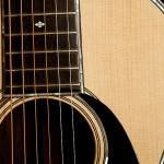 Brazilian Rosewood Parlor Guitar-2