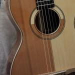 Lichty Custom Guitar, Patchwork Parlor
