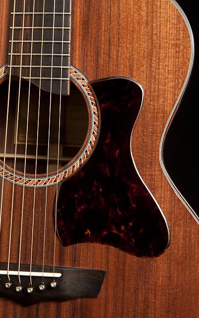 Randall Bramblett Guitar
