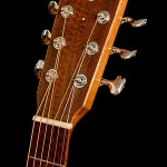 Snakewood on Guitars, headplate