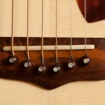Snakewood on Guitars, snakewood bridge