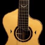 Ziricote Bard Guitar,