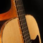 Brazilian Rosewood Acoustic Guitar, Lichty Guitar