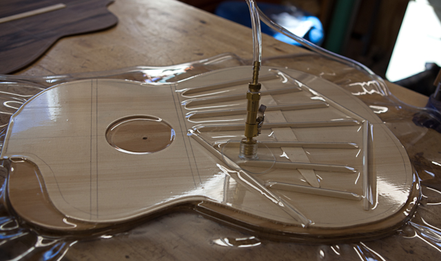 Guitar Construction, crossover pau ferro