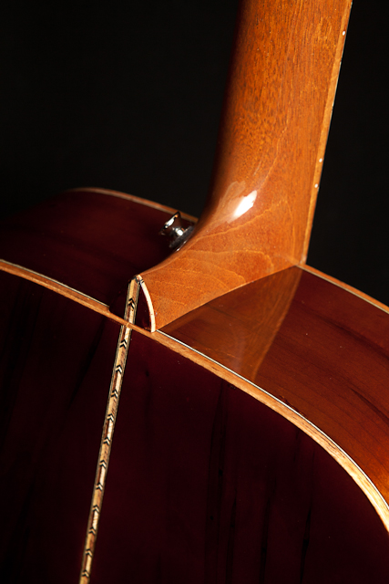 Ambrosia Maple Lichty Guitar
