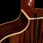 Pau Ferro Crossover Guitar