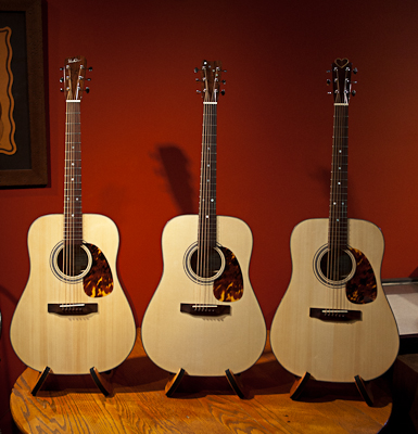 Acoustic Guitar Building Workshop Guitars