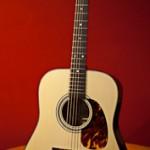 Acoustic Guitar Building Workshop Dick Cook Guitar