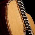 Lichty Cocobolo Crossover Guitar