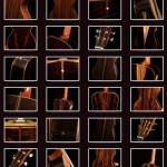 Brazilian Rosewood Instrument Photos