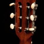 Maple Dream Guitar