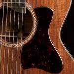 Randall Bramblett Guitar, Lichty Guitars