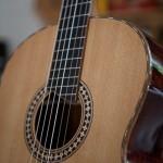 Acoustic Guitar Building Workshop, Cocobolo Crossover