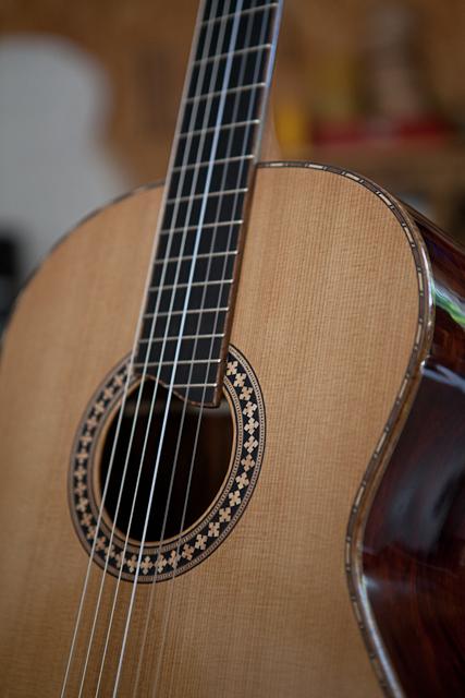 acoustic guitar building workshop cocobolo guitar lichty guitars. Black Bedroom Furniture Sets. Home Design Ideas