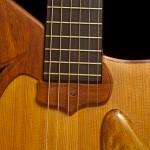 Sturgill Guitar
