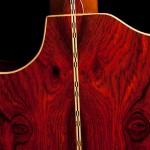 Custom Guitar, Cocobolo Alchemist-9