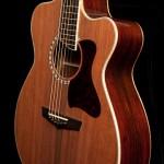 Custom Guitar, Cocobolo Alchemist-15