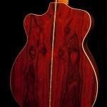 Custom Guitar, Cocobolo Alchemist-16