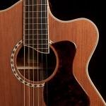 Custom Guitar, Cocobolo Alchemist