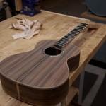 Custom Ukulele Build, Cocobolo Tenor Ukulele